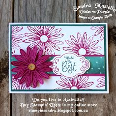 Daisy Delight : Stampin' Up! : Sandra Mastello : Violet vs Purple