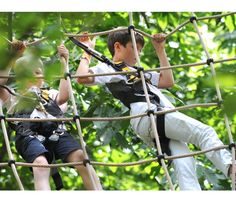 The UK's most exciting treetop adventure, high ropes and team building courses right here in Guildford, Surrey with all kinds of obstacles, Zip Wires and a freefall descender. Surrey, Adventure, Gallery, Wood, Roof Rack, Woodwind Instrument, Timber Wood, Saree, Wood Planks