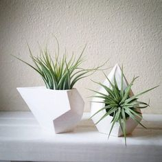 Geometric mini planters, set of teardrop dodecahedron air plant holders, faceted containers, pair of mini planters - All For Herbs And Plants Air Plants, Potted Plants, Indoor Plants, Air Plant Display, Plant Decor, Concrete Pots, 3d Prints, Plant Holders, Indoor Garden