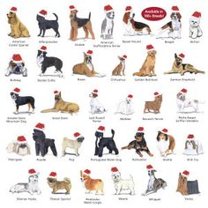 Santa puppies! ^U^ Wow, they're available in all 160+ AKC breeds...L:  Breed Glass Ornaments - Dog Beds, Gates, Crates, Collars, Toys, Dog Clothing & Gifts