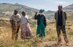 Tadelle Gebretsadik (Bauer), Aberekech Tesfay (Bäuerin), Adaneach Kiros (Gemeindeverantwortliche) und Hehari Kiolanu (Beamter des Distrikts). (Bild: Thomas Imo / Photothek)