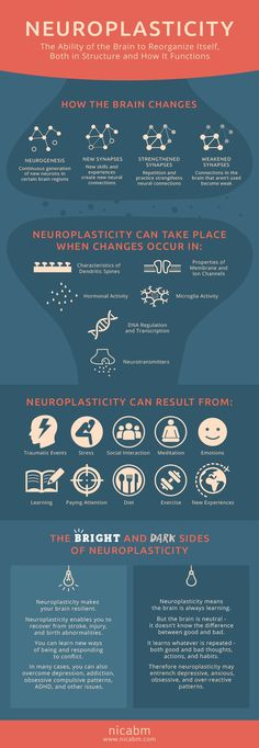 Ah yes, there is a dark side to neuroplasticity...