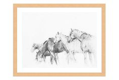 Barbara Cosgrove, The Horse Boy Room, Pencil Drawings, My Design, Moose Art, Horses, Artwork, Animals, Family Rooms, Kings Lane