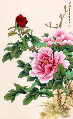 679 Best Chinese Flower Images In 2020 Chinese Flowers Chinese