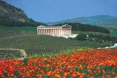 Image result for segesta