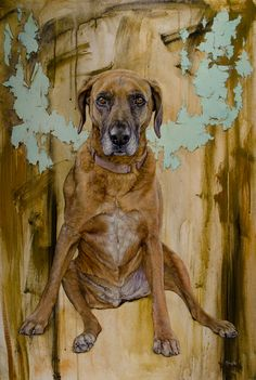 Sophie, oil on canvas, 24 x 36.  An old and wonderful Rhodesian Ridge-back living in Colorado.