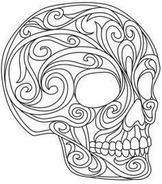 Baroque Natura - Skull_image