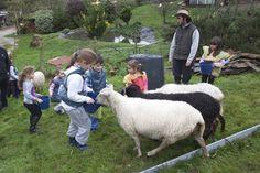 Vivir cerca de una granja puede prevenir a los niños del asma