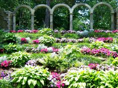 1000 Images About Botanical Gardens On Pinterest Botanical Gardens Conservatory And Gardens