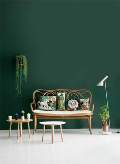wandfarbe zimmerpflanzen grün farbideen wandgestaltung sauber