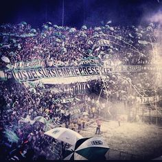 Los del sur! Ultras Football, Concert, Tin, Movie Posters, David, Club, Tattoo, Futbol, Amor