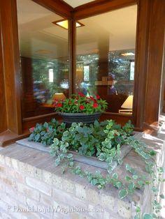 Planter outside bedroom window