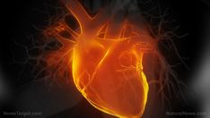 Vitamin K essential to a healthy heart; deficiency found to contribute to unhealthy enlargement in adolescents