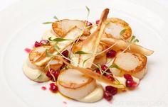 Scallop with Parsnip Recipe - Great British Chefs