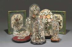 Group of Victorian shell art displays