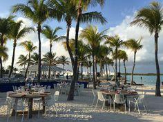 Beach BBQ dinner set up on Blue Haven Resort's private beach, Turks and Caicos Turks And Caicos Resorts, Making Water, Beach Bbq, Swim Up Bar, Beach Wedding Inspiration, Adventure Tours, All Inclusive Resorts, Beautiful Beaches, Palm Trees