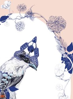 Magpie Birds | Animated gifs on Behance