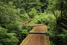 the Bloedel Reserve on Bainbridge Island, just west of Seattle, across the Puget Sound (designed by Richard Haag - this area probably in the 1970s)