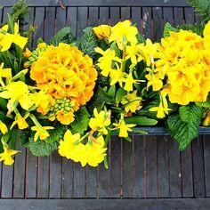 www.fleursaubalcon.com Une jardinière fleurie livrée tous les mois en vous abonnant à la Collection La Parisienne de Fleurs au Balcon