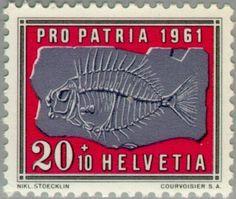Stamp: Fossile of Black scorpionfish (Scorpaena porcus) (Switzerland) (Pro Patria) Mi:CH 733,Sn:CH B305,AFA:CH 729,Zum:CH B105
