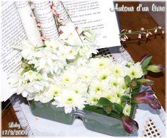 Une de mes préférées compositions Insérer un livre avec des fleurs Photo de Karine Luby http://mes101luby.eklablog.com