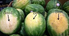 A message from our sponsors Nothing is asrefreshing asthe sweet, juicy taste of a watermelon on a summer day. However, a watermelon can only be as good as the one you choose from the market. You may think that choosing a great watermelon is up tochance, but there are actually several ways to spot the …