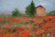 French Poppies | Barbara Andolsek