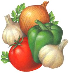 Vegetables including tomato, green bell pepper, onion and garlic. Vegetable Drawing, Vegetable Painting, Vegetable Illustration, Plant Illustration, Easy Disney Drawings, Vegetable Pictures, Fruit Icons, Fruits Drawing, Stock Art