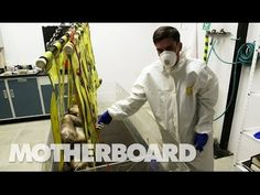 (14) (NSFW) Reviving the Dead With DIY Forensics: Still Life (Full Documentary) - YouTube Plastic In The Sea, Forensic Science, Very Scary, Life And Death, Forensics, Documentary Film, Still Life, Fun Facts, Special Interest