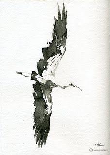 Keron Grant Blog: Stork