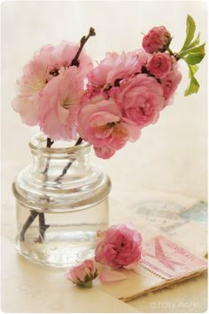 A Rosy Note: A Golden Texture Tuesday