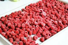 """Learn how to """"Flash Freeze"""" items for your Freezer.  #FrozenFood, #FoodStorage"""
