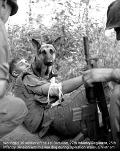 Wounded US soldier of the 1st Battalion, 27th Infantry Regiment, 25th Infantry Division with his war dog during Operation Waial, Vietnam. v@e