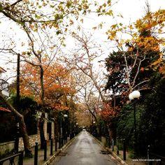 Greece Trip, Athens Greece, Greece Travel, Paths, Street Art, The Neighbourhood, To Go, Sidewalk, Greek
