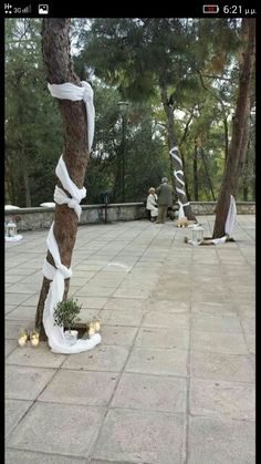 Γαμος Forest Wedding, Dream Wedding, Wedding Favors, Wedding Decorations, Day Plan, Tree Designs, Weeding, Wedding Trends, Diy And Crafts