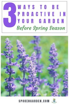 """Want to learn how to be a proactive gardener before spring season? Learn to increase productivity in your garden and save time with our helpful suggestions. In """"3 Ways to Be Proactive In Your Garden,""""you'll hear ideas and examples of how to implement this garden strategy for yourself. Listen to Spoken Garden's DIY Garden Minute Ep. 43 to learn more!#wintergarden #gardenstrategy #gardening#garden #proactive #gardenmaintenance"""