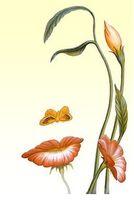 pintura de silhuetas de rostos com flores - Pesquisa Google