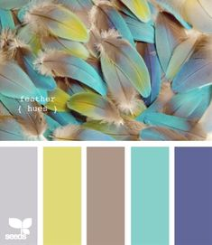 I like the gray brown, turquoise, and blue add a coral - No coral; I love palettes taken from nature.  Bird feather colors are always so pretty!  I want a Red-Tailed Hawk palette.