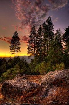 Parque Nacional de Yosemite, Califórnia por caroline.c