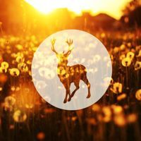 Glass Animals - Gooey (Wild Culture Remix) by wild_culture on SoundCloud