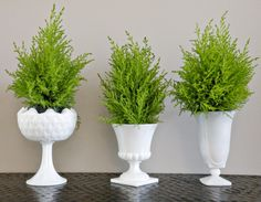 White Vase Dinner Party Decor