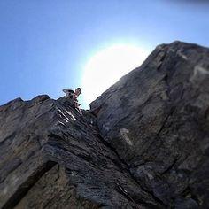 #climbing in Ecuador (via Francisco Silva)