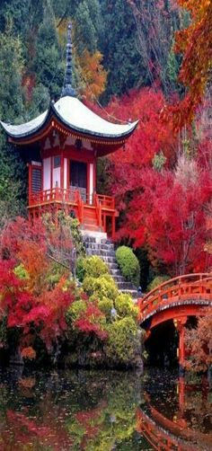A Summer Tea House in the Mountains - possibly a small shrine - beautiful Japan.- appears to be Autumn.