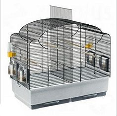 Ferplast Canto Pet Animal Aviary Bird Black Safety Accessories Cage in Pet Supplies, Birds, Cages Diy Bird Cage, Bird Cage Stand, Bird Cages For Sale, Bird Types, Steel Cage, African Grey Parrot, Pet Supply Stores, Metal Birds, Bonbon