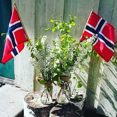 Norge i rødt hvitt og blått #norwaysnationalday Adventure, Table Decorations, Plants, Furniture, Instagram, Home Decor, Ideas, Decoration Home, Room Decor