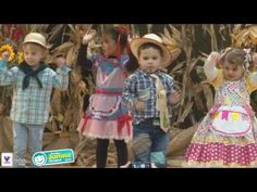 Festa Junina Incomar 2016 - Pré I D - YouTube To Youtube, Musicals, Videos, Toddler Girls, Party, Cooperative Games, Coops, Musical Theatre