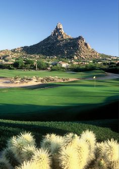 Desert Highlands Scottsdale A beautiful course paired with a beautiful mountain scene. What could be more beautiful Desert Highlands - Arizona Golf Communities | AZ Golf Homes ✤  re-pinned by  http://www.waterfront-properties.com