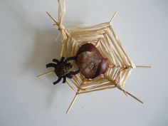 Enjoy this traditional Dutch craft - spider webs from conkers and raffia - shared at The Imagination Tree. Raffia Crafts, Leaf Crafts, Diy Crafts, Autumn Activities For Kids, Crafts For Kids, Easy Halloween, Halloween Crafts, Conkers Craft, Spider Crafts