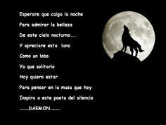 hunter13: lobo luna