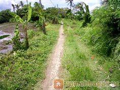 #rumah #tanah #property #properti #rumah bagus #rumahbagus  #rumahbagus.us  #gituan  #gituan.com  #tokobagus  Rumah Rumahbagus Rumah bagus Property Property Gitu gituan Gituan www.rumahbagus.us  www.gituan.com  www.gitugituan.com www.tokobagus.property  www.tokobagus.in  @us_rumahbagus  @rumahbagus_us Tanah dijual di tabanan, bali Tanah Dijual Harga : Rp. 3.000.000.000,00 Luas Tanah : 2000.0 m2 Luas Bangunan : 1.0 m2 Alamat Lokasi : tabanan, bali